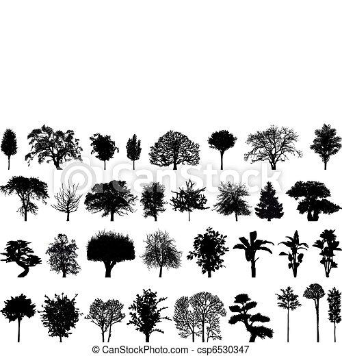 απεικονίζω σε σιλουέτα , δέντρα  - csp6530347
