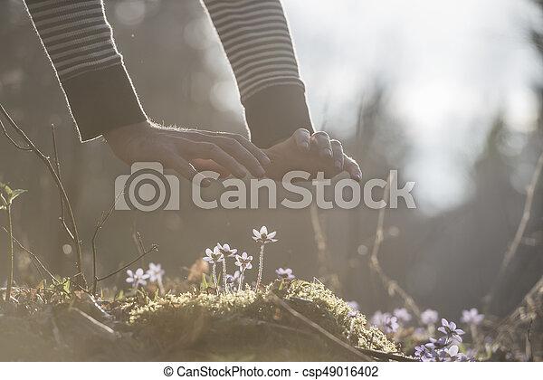 αρσενικό , άνοιξη , πάνω , πίσω , ηλιακό φως , αόρ. του light , ευφυής , ανάμιξη , μικρό , λουλούδια  - csp49016402