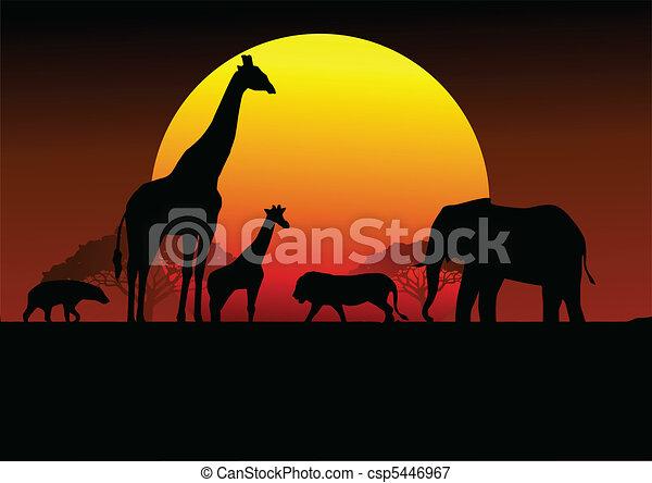 αφρική , περίγραμμα , κυνηγετική εκδρομή εν αφρική  - csp5446967