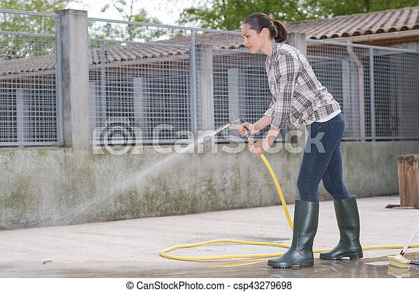 βοηθός , ώρα , σπιτάκι σκύλου , καθάρισμα  - csp43279698