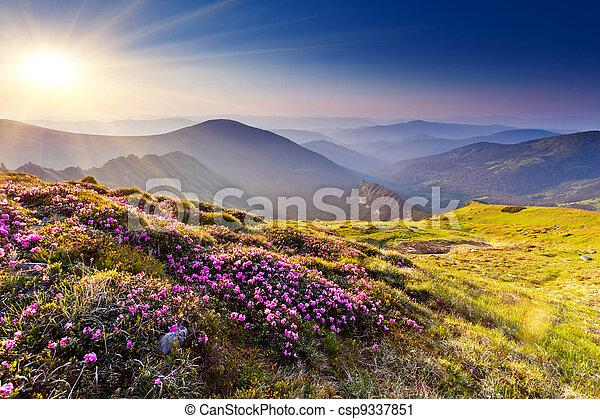 βουνήσιος γραφική εξοχική έκταση  - csp9337851