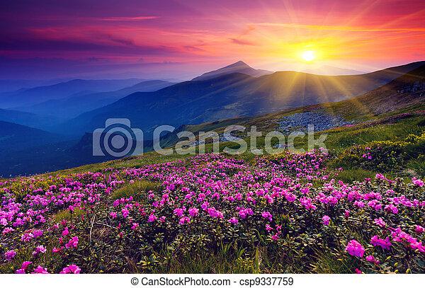 βουνήσιος γραφική εξοχική έκταση  - csp9337759