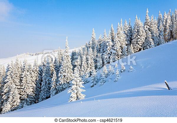βουνό , χειμερινός γραφική εξοχική έκταση  - csp4621519