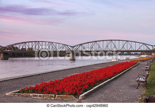 γέφυρα , torun - csp42948960