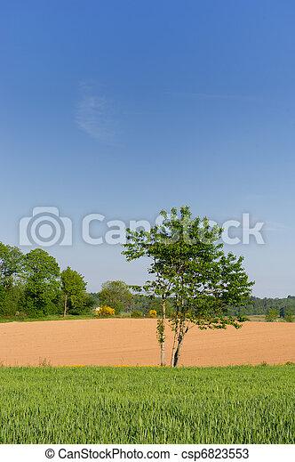 γεωργία , τοπίο  - csp6823553