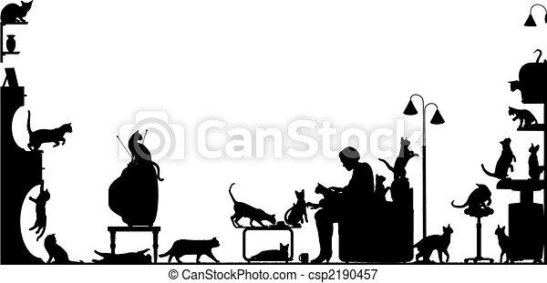 δωμάτιο , γάτα  - csp2190457