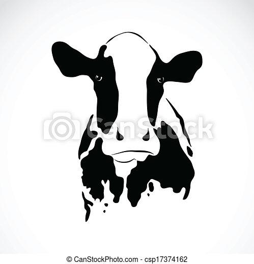 εικόνα , μικροβιοφορέας , αγελάδα  - csp17374162