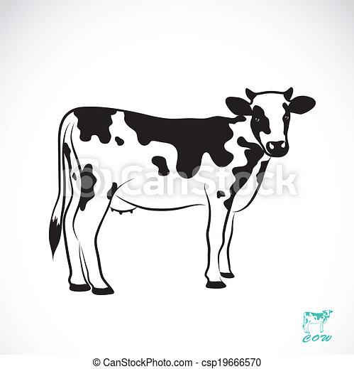 εικόνα , μικροβιοφορέας , αγελάδα  - csp19666570