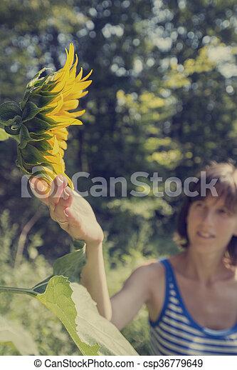 εξαίσιος γυναίκα , ποκάμισο , ηλιοτρόπιο , γυμνός , νέος , αφορών , ακμάζων  - csp36779649