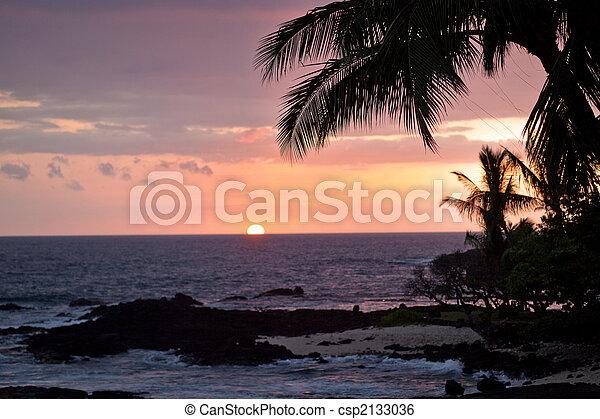 ηλιοβασίλεμα , χαβάη , ακτοπλοϊκός , βλέπω  - csp2133036