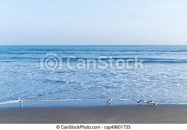 θαλασσογραφία  - csp49601733
