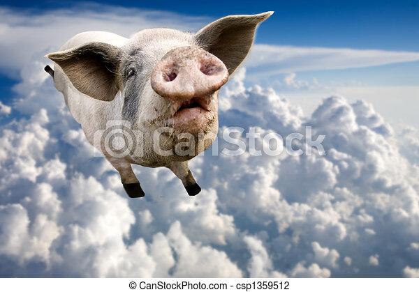 ιπτάμενος , γουρούνι  - csp1359512