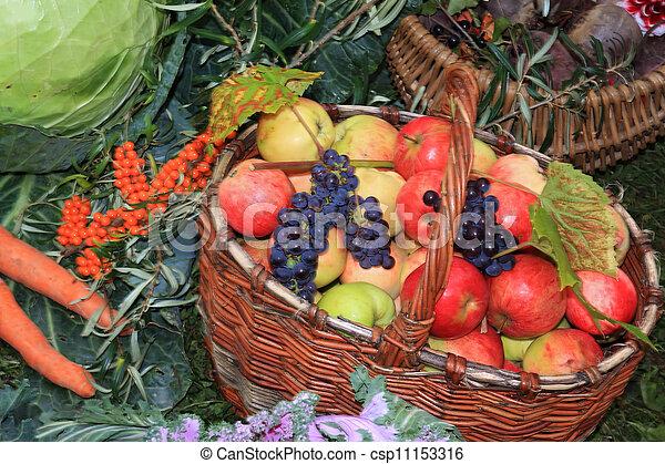 καλαθοσφαίριση , αγροτικός , μήλο , αγορά  - csp11153316