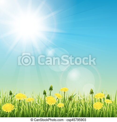 καλοκαίρι , λιβάδι  - csp45795903