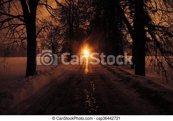 λεωφόροs , δέντρα , night. - csp36442721