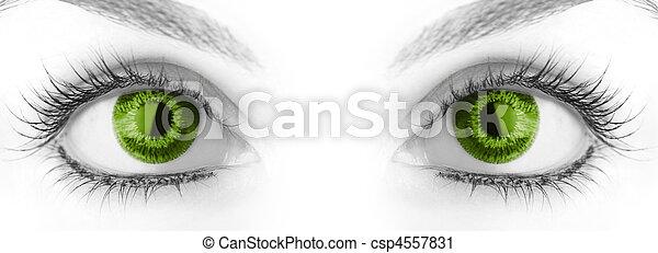 μεγάλος , ομορφιά , eye. - csp4557831