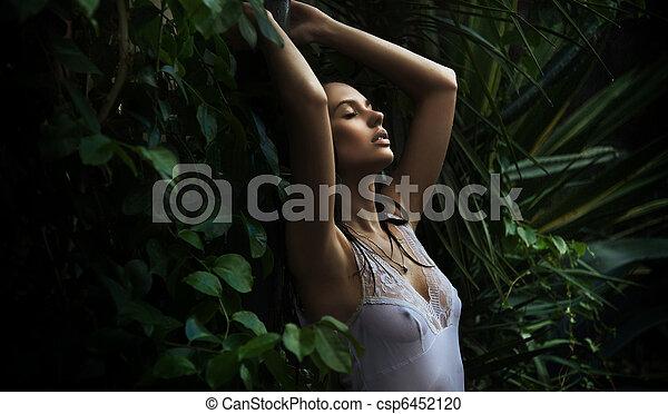 μελαχροινή , διατυπώνω , δάσοs , αβρός  - csp6452120
