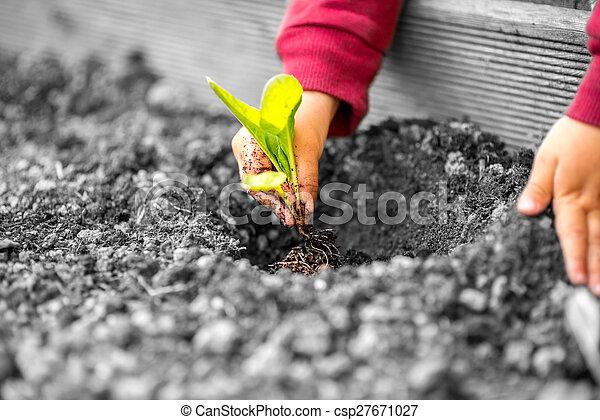 μικρό , φύτεμα , εργοστάσιο , παιδί , ανάμιξη  - csp27671027