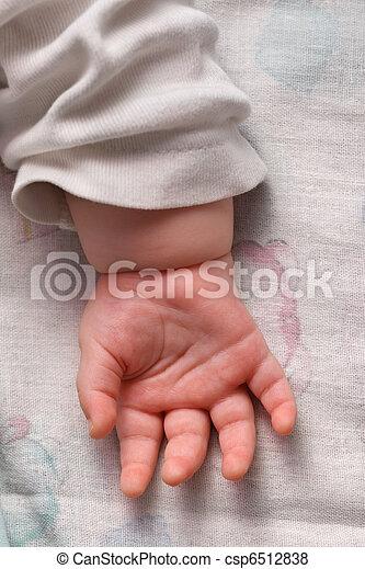 μωρό , βάγιο  - csp6512838