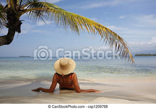νησί , παράδεισος  - csp1209768