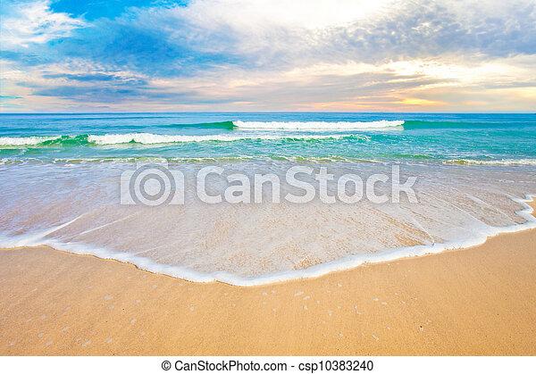 οκεανόs , τροπικός , δύση ακρογιαλιά , ή , ανατολή  - csp10383240