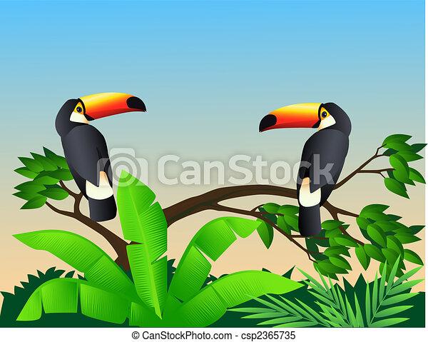 οπωροφάγο πτηνό με μέγα ράμφο , πουλί  - csp2365735