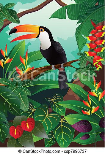 οπωροφάγο πτηνό με μέγα ράμφο , πουλί  - csp7996737