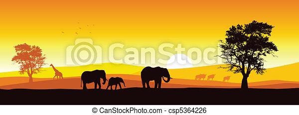 πανόραμα , κυνηγετική εκδρομή εν αφρική  - csp5364226