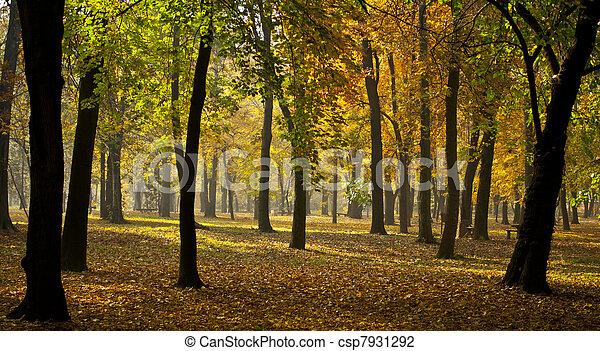 πανόραμα , φθινόπωρο  - csp7931292