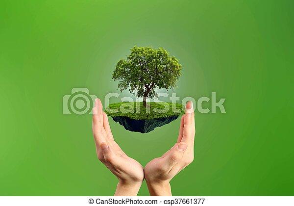 περιβάλλον  - csp37661377