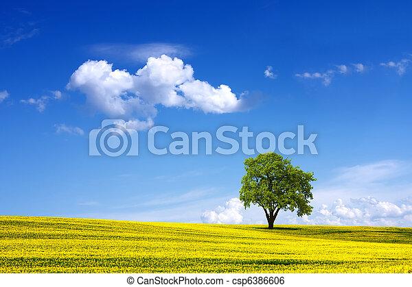 περιβάλλον  - csp6386606
