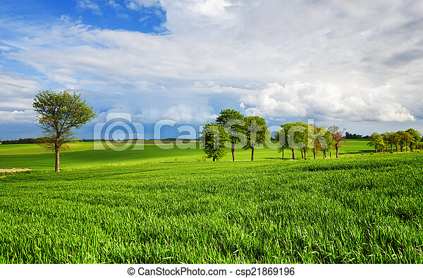 περιβάλλον  - csp21869196