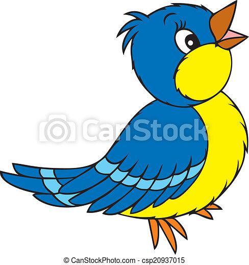 πουλί  - csp20937015