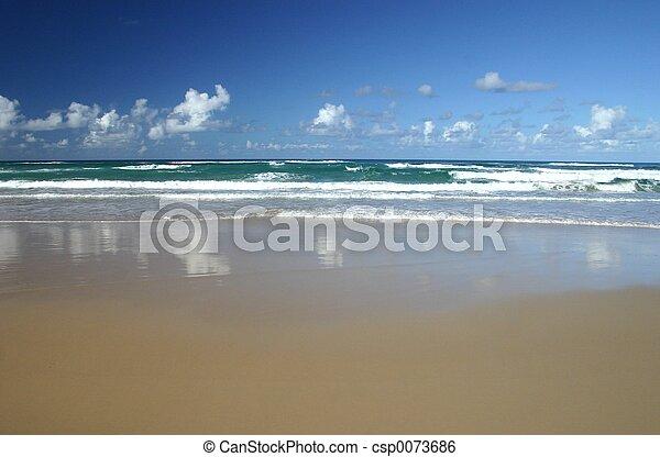 σερφ , άμμοs , ανεμίζω  - csp0073686