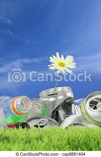 σκουπίδια , concept., περιβάλλοντος διατήρηση , μαργαρίτα , ακμάζω  - csp9881404
