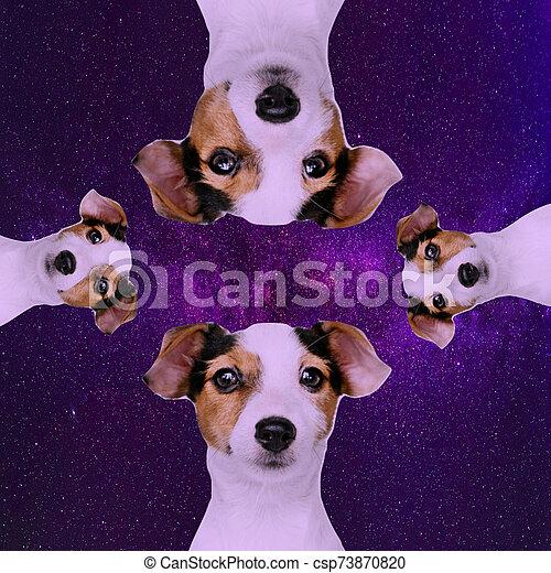 σκύλοs , διάστημα , 1 , τμήμα  - csp73870820