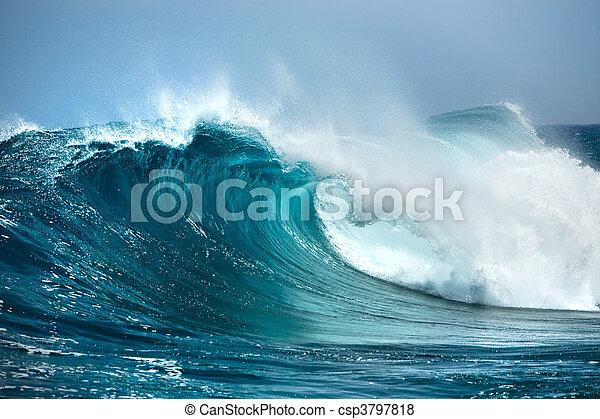 του ωκεανού ανεμίζω  - csp3797818