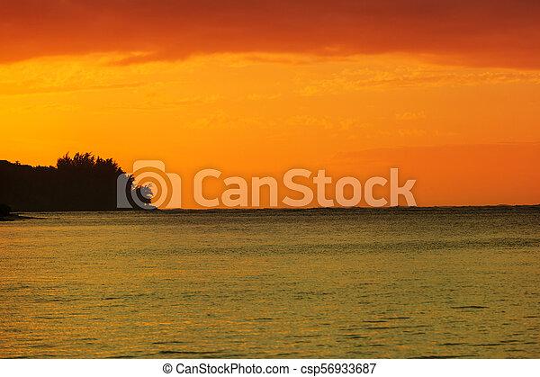 τροπικός , ηλιοβασίλεμα  - csp56933687