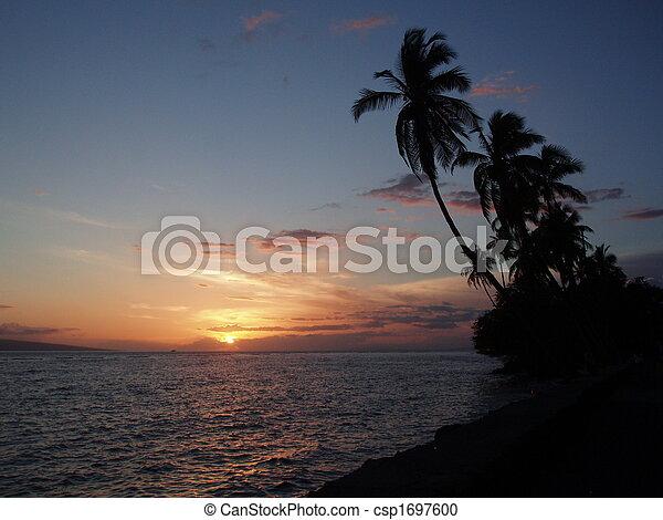 τροπικός , ηλιοβασίλεμα  - csp1697600