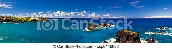 τροπικός , οκεανόs , ακτογραμμή , χαβάη  - csp8446833