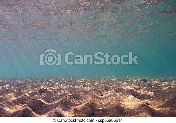 υποβρύχιος , διάστημα , μεσογειακός , σκηνή , θάλασσα , γαλήνιος , αντίγραφο  - csp55905614