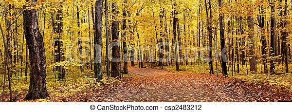 φθινόπωρο , πανόραμα  - csp2483212
