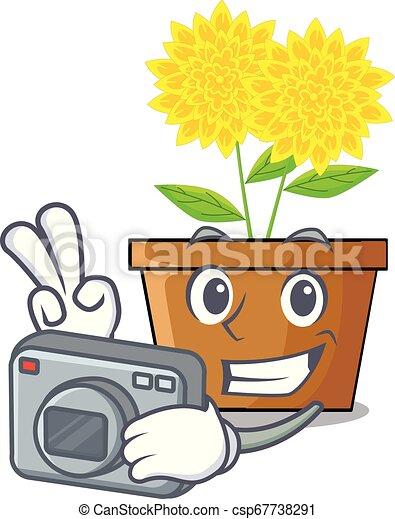 φωτογράφος , γουρλίτικο ζώο , λουλούδι , δάλια , ανακόπτω  - csp67738291