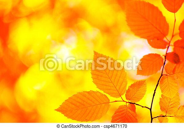 φύση  - csp4671170