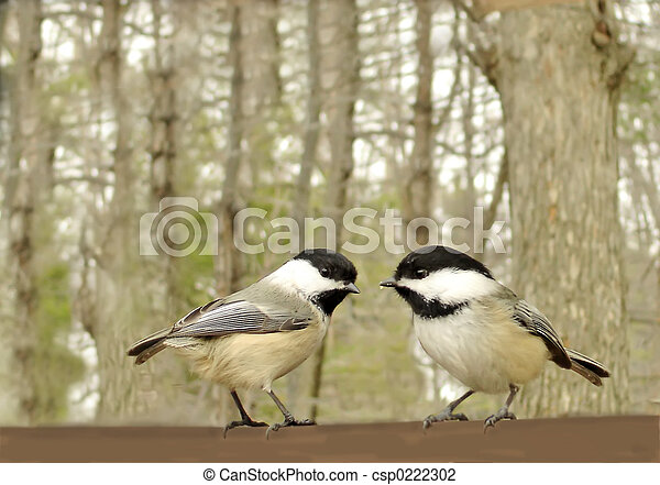 χαριτωμένος , πουλί  - csp0222302
