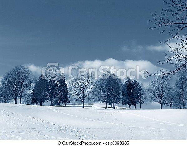 χειμερινός γραφική εξοχική έκταση  - csp0098385