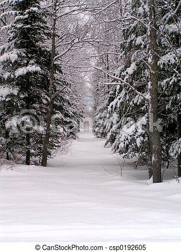 χειμερινός γραφική εξοχική έκταση  - csp0192605