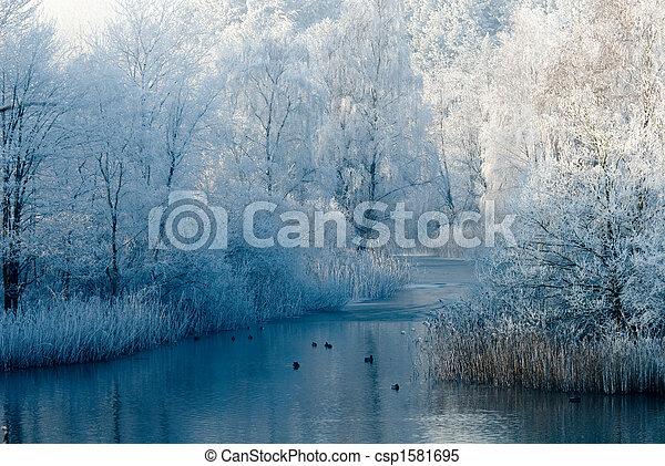 χειμερινός γραφική εξοχική έκταση , σκηνή  - csp1581695
