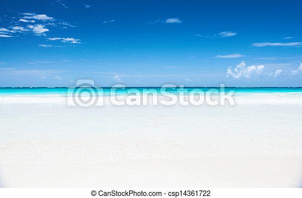 όμορφος , θαλασσογραφία  - csp14361722