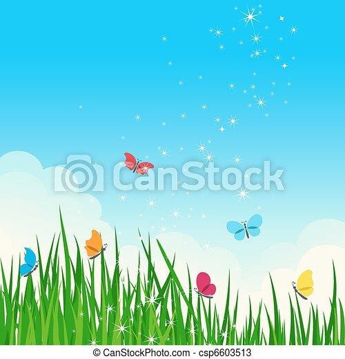 όμορφος , καλοκαίρι , λαμπερός , meadow. - csp6603513